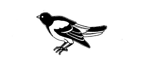 09 25 14 Blog Correct Bird Logo Twitter