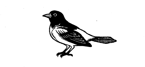 09 25 14 Blog Lifelike Bird Logo Twitter