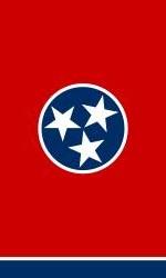 Logo TN flag