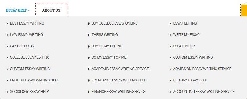 EssayWriter4U review - Services