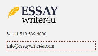 EssayWriter4U review - Support