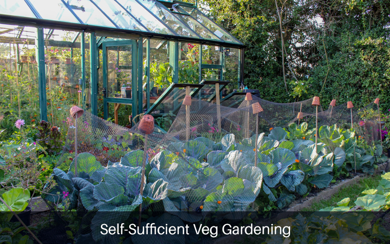 Self-Sufficient Veg Gardening [Learning With Experts]
