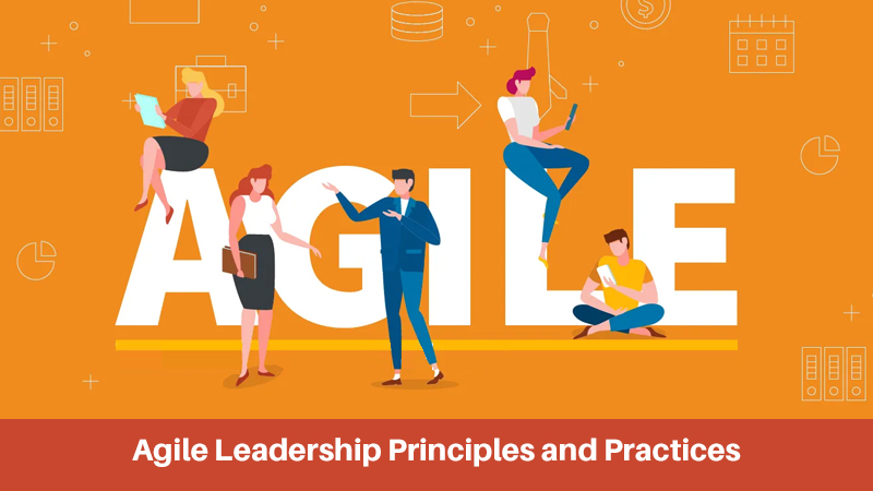 Agile Leadership Principles and Practices By University of Maryland [edX]