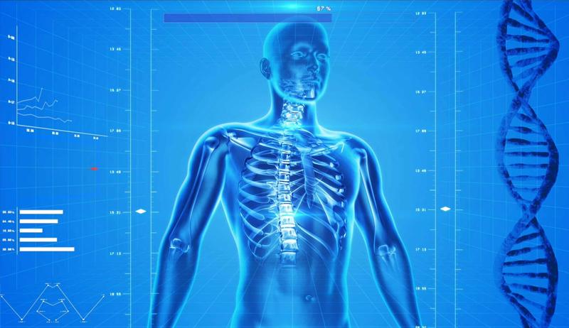 Anatomy Specialization [Coursera]