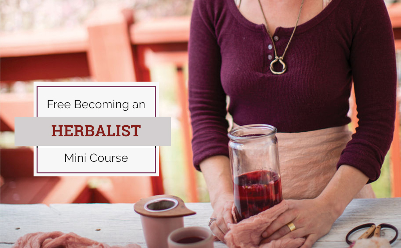 Free Becoming an Herbalist Mini Course [The Herbal Academy]