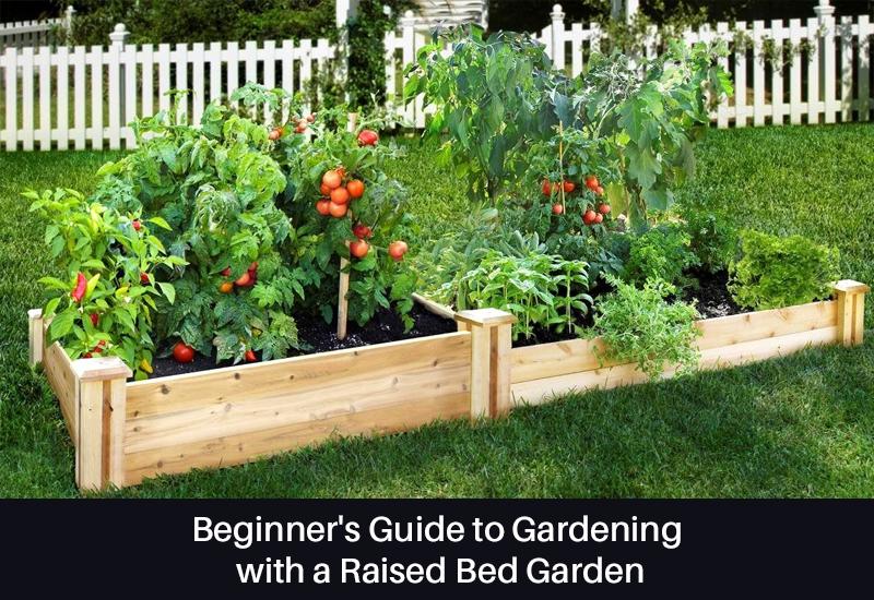 Beginner's Guide to Gardening with a Raised Bed Garden [Skillshare]