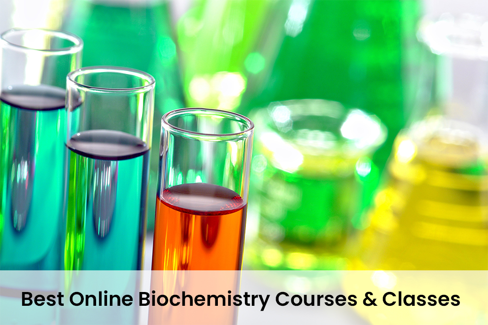 Best Online Biochemistry Courses & Classes
