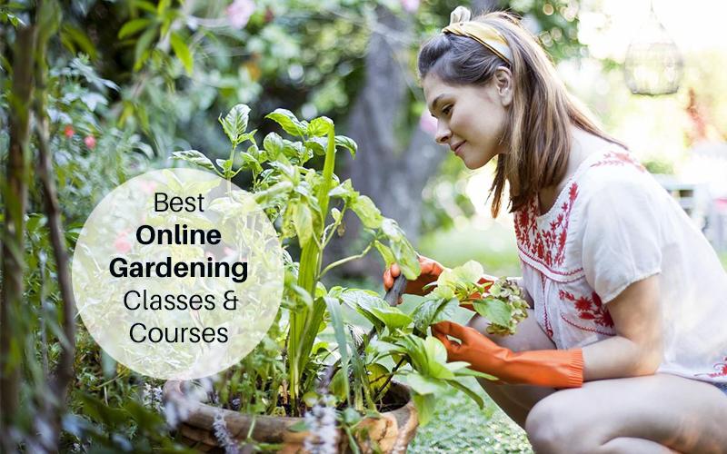 Best Gardening Online Courses & Classes