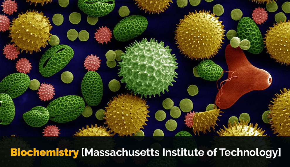 Biochemistry [Massachusetts Institute of Technology]