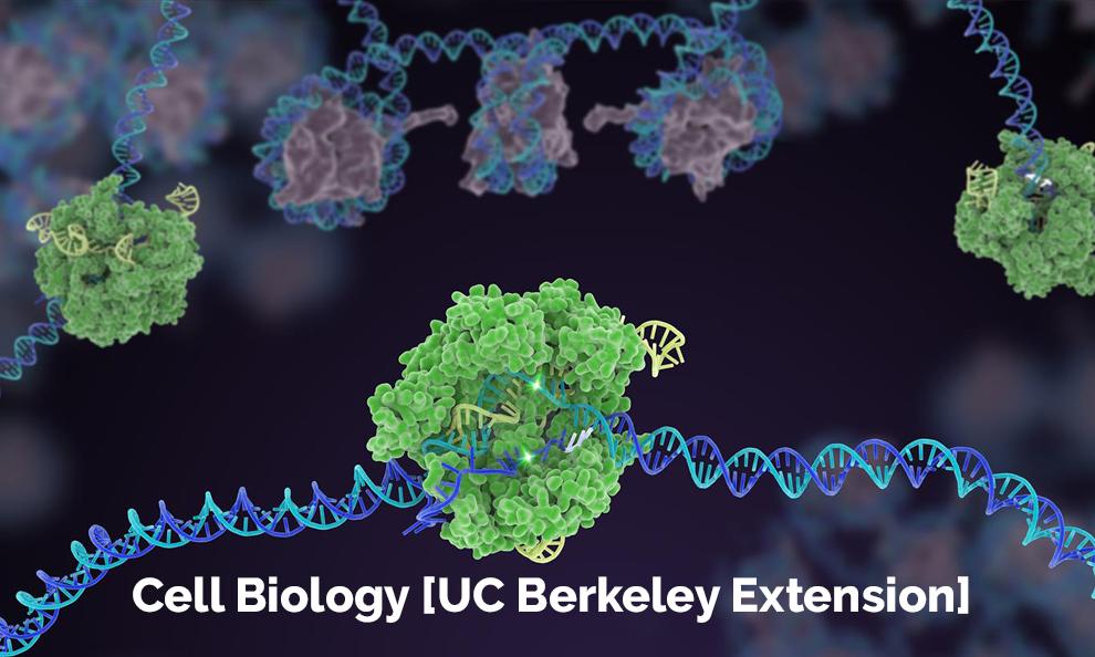 Cell Biology [UC Berkeley Extension]
