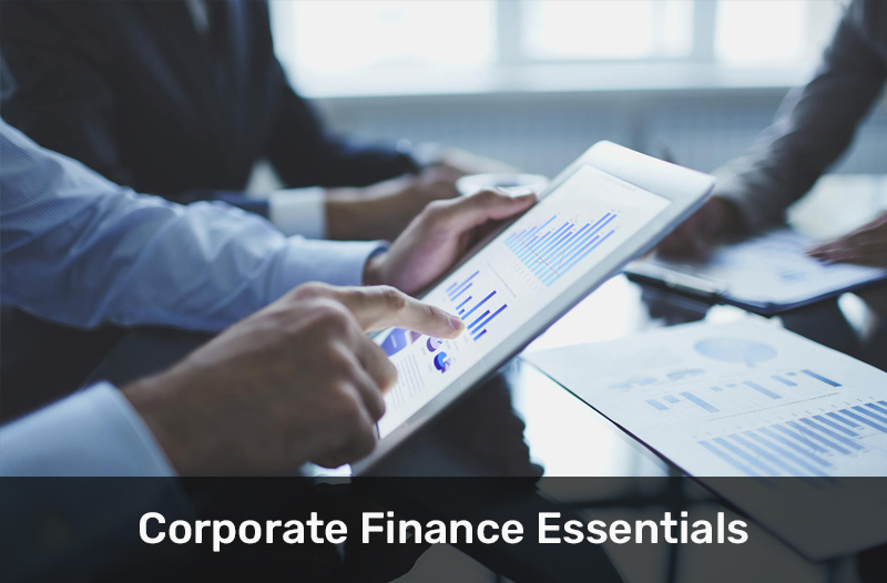 Corporate Finance Essentials By IESE Business School [Coursera]