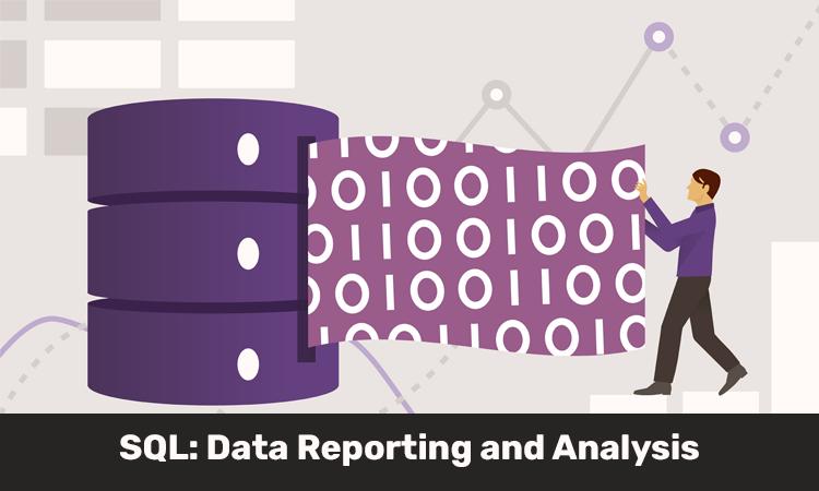 SQL: Data Reporting and Analysis [LinkedIn]