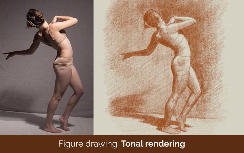 Figure drawing: Tonal rendering (Lynda.com)