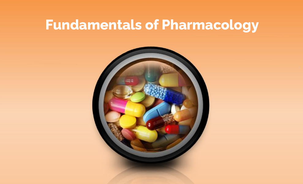 Fundamentals of Pharmacology [Canvas]
