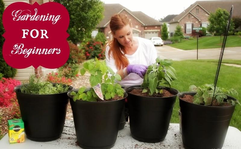 Gardening For Beginners [Skillshare]