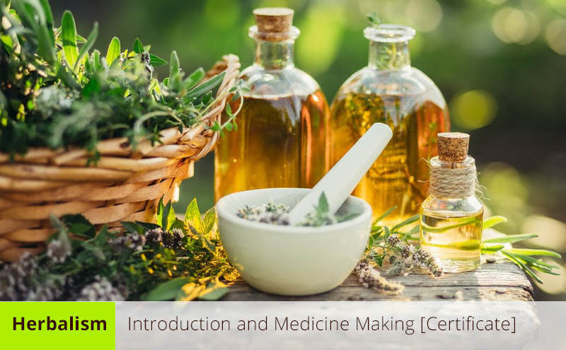 Herbalism: Introduction and Medicine Making [Certificate] [Udemy]