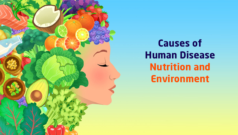 Causes of Human Disease: Nutrition and Environment By University of Leeds [Future Learn]