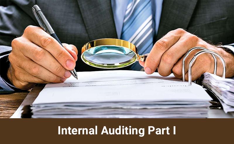 Internal Auditing Part I [Udemy]