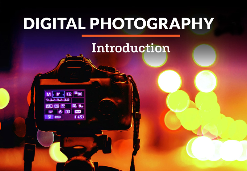 Introduction to Digital Photography - Alison