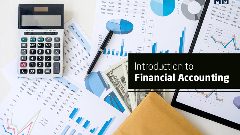 Introduction to Financial Accounting - FREE (Udemy)