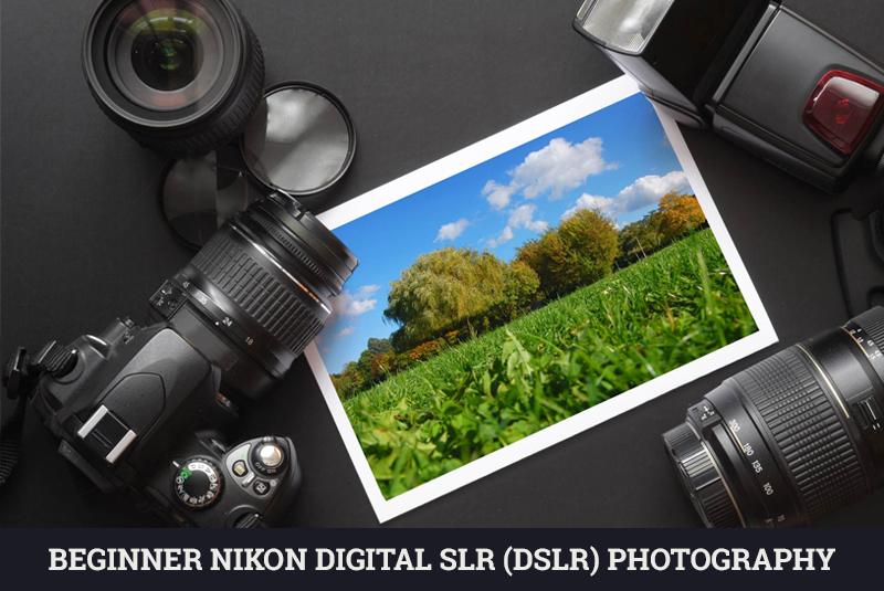 Beginner Nikon Digital SLR (DSLR) Photography – Udemy