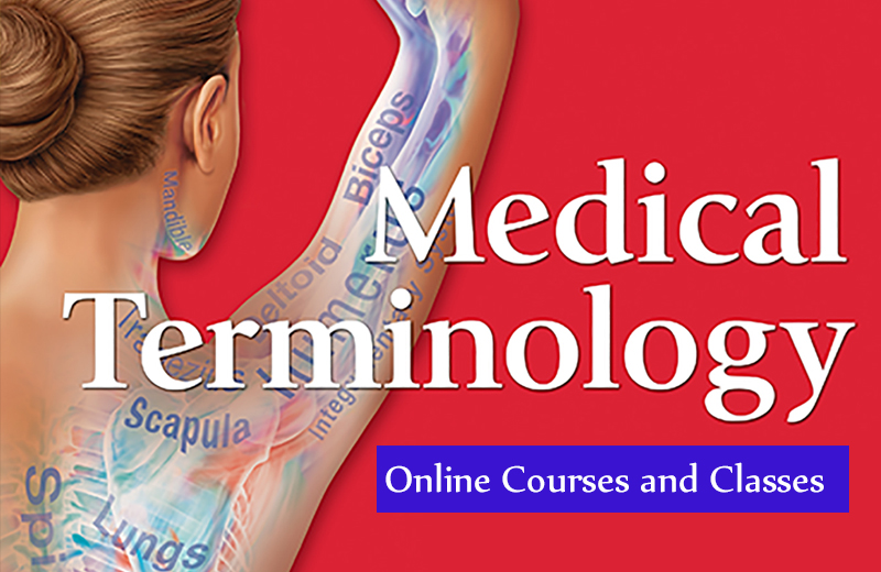Best Medical Terminology Online Courses and Classes