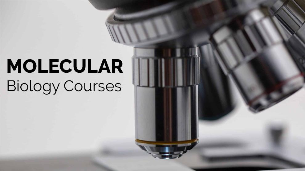 Molecular Biology Courses [Coursera]