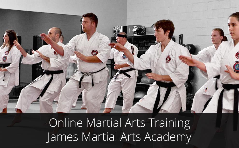 Online Martial Arts Training - James Martial Arts Academy