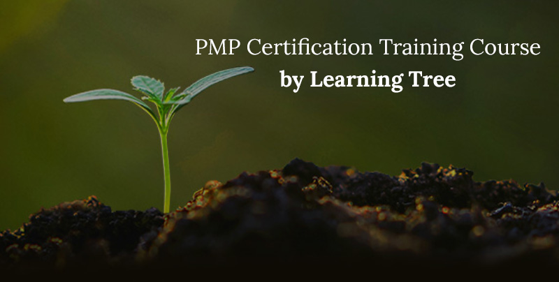 PMP Certification Training Course by Learning Tree