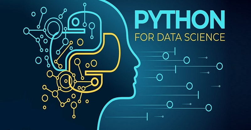 Python for Data Science and Machine Learning Bootcamp [Udemy]