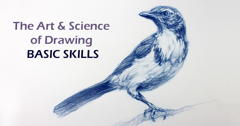The Art & Science of Drawing / BASIC SKILLS (Udemy)