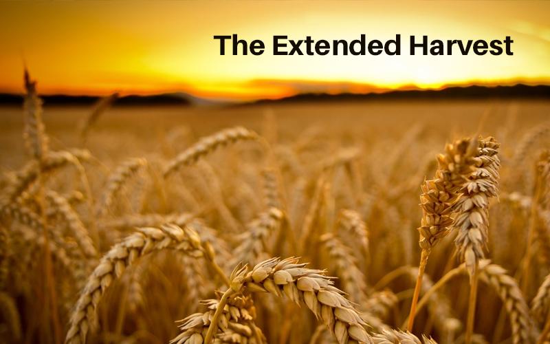 The Extended Harvest [Bluprint]