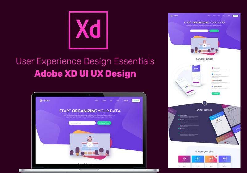 User Experience Design Essentials - Adobe XD UI UX Design (Udemy)