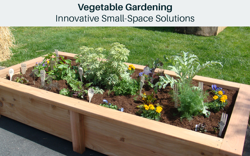 Vegetable Gardening: Innovative Small-Space Solutions [Bluprint]