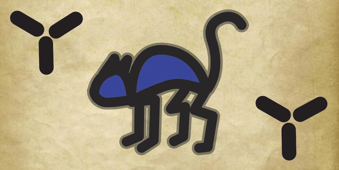 Raycat