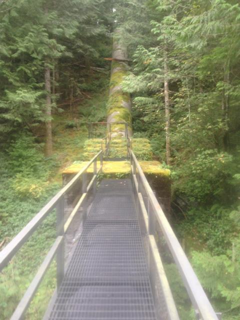 Cedar Falls Pinstock and Trestle Recoating
