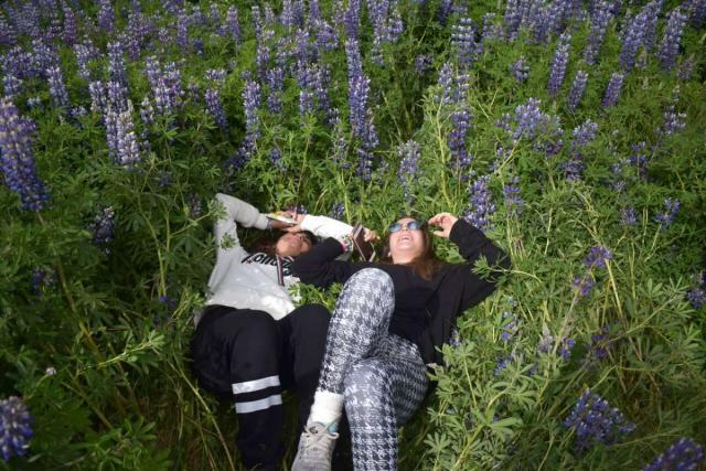 Teen travelers with purple Iceland flowers during summer travel adventure program