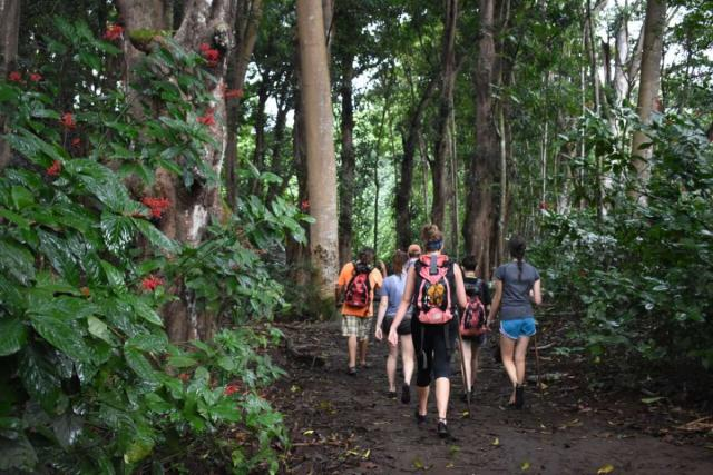 Students go on a nature walk in Hawaii on summer teen travel program.