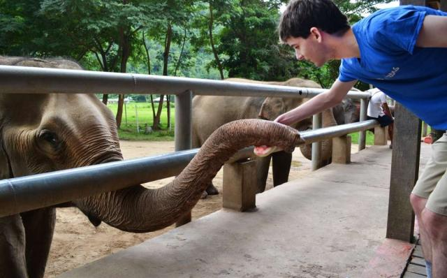 Teenage traveler interacts with elephant during summer youth travel program in Thailand