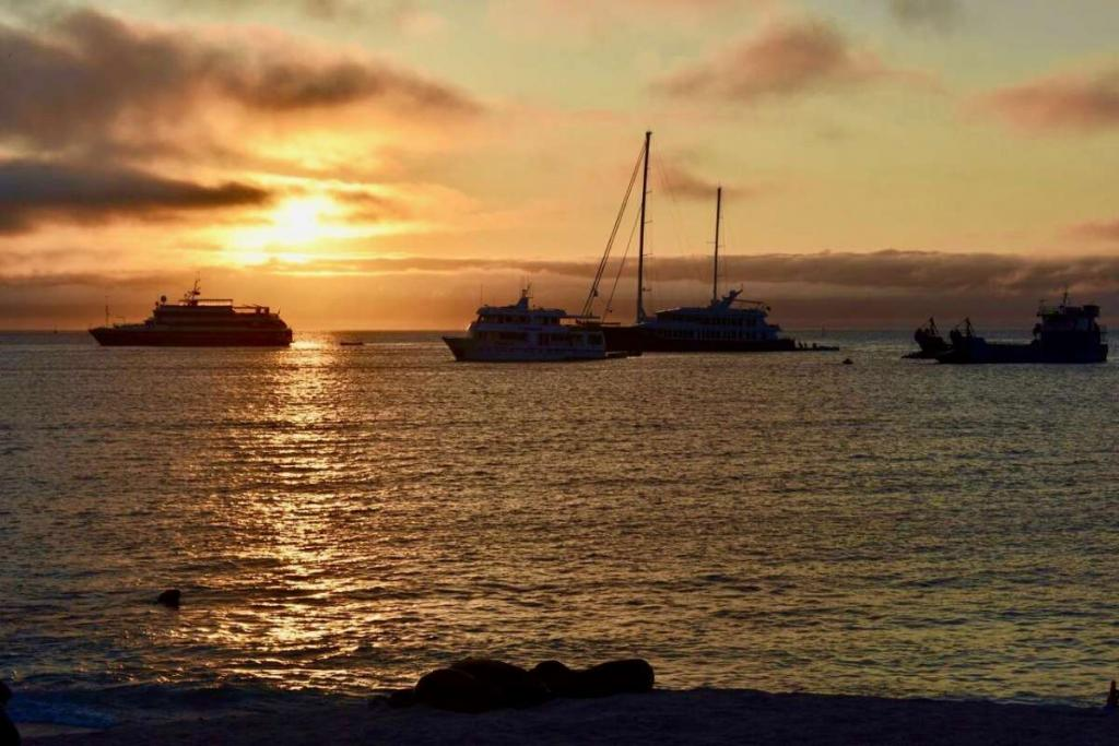 Teens capture a photo of boats on their summer tour of the Ecuador and the Galápagos Islands.