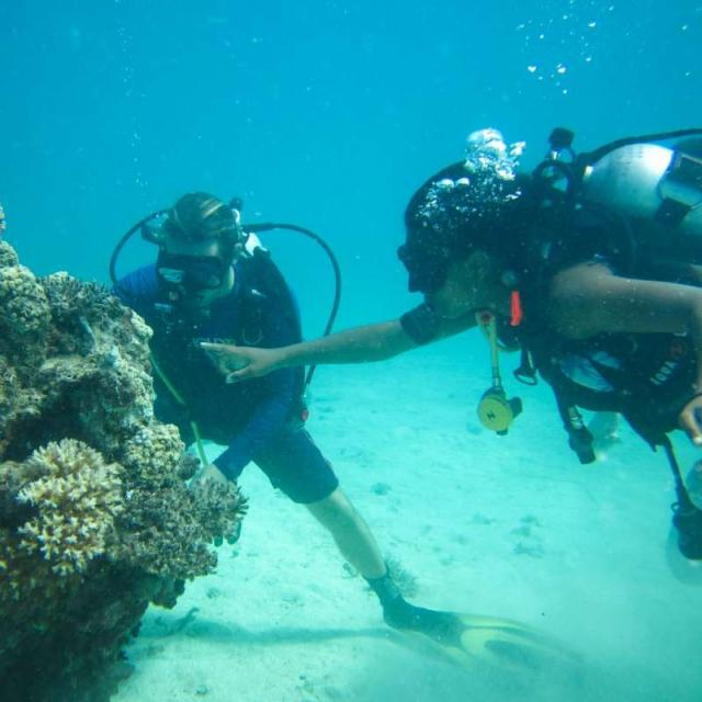 High school student scuba dives in Oceania on their summer teen tour.