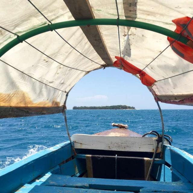Students travel by boat to Prison Island in Zanzibar on their summer travel tour of Tanzania.