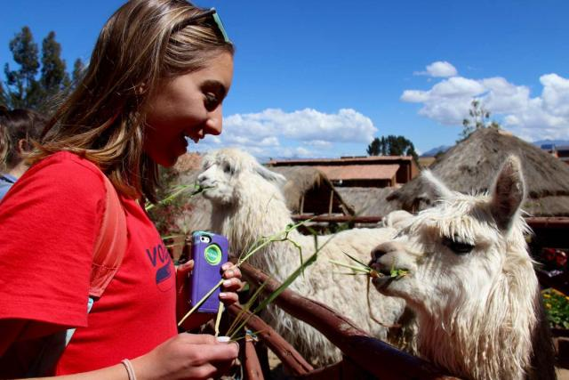 A teen makes friends with a llama on their summer tour of Peru.
