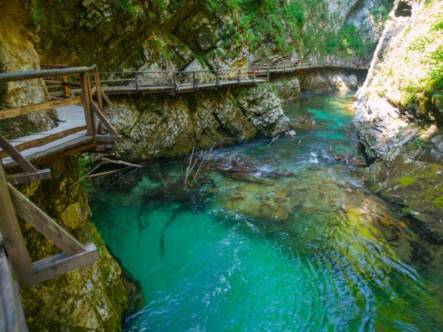 View of Vintgar Gorge seen on summer teen adventure travel program