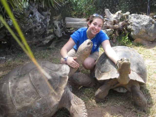 A student poses for a photo with tortoises on their teen service tour of Ecuador and the Galápagos Islands.