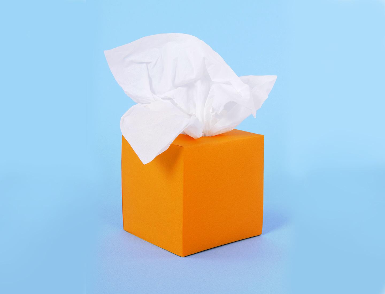 Blog Colorblock Allergy