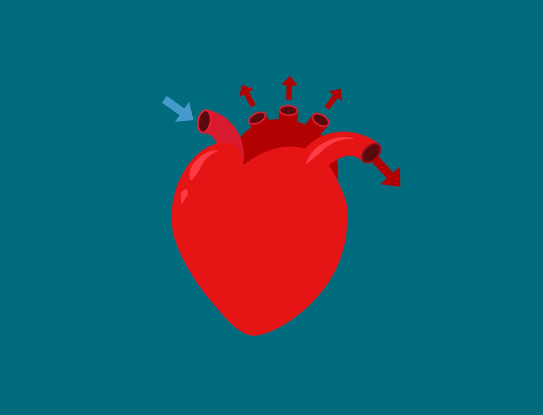 Blog Colorblock Healthy Heart