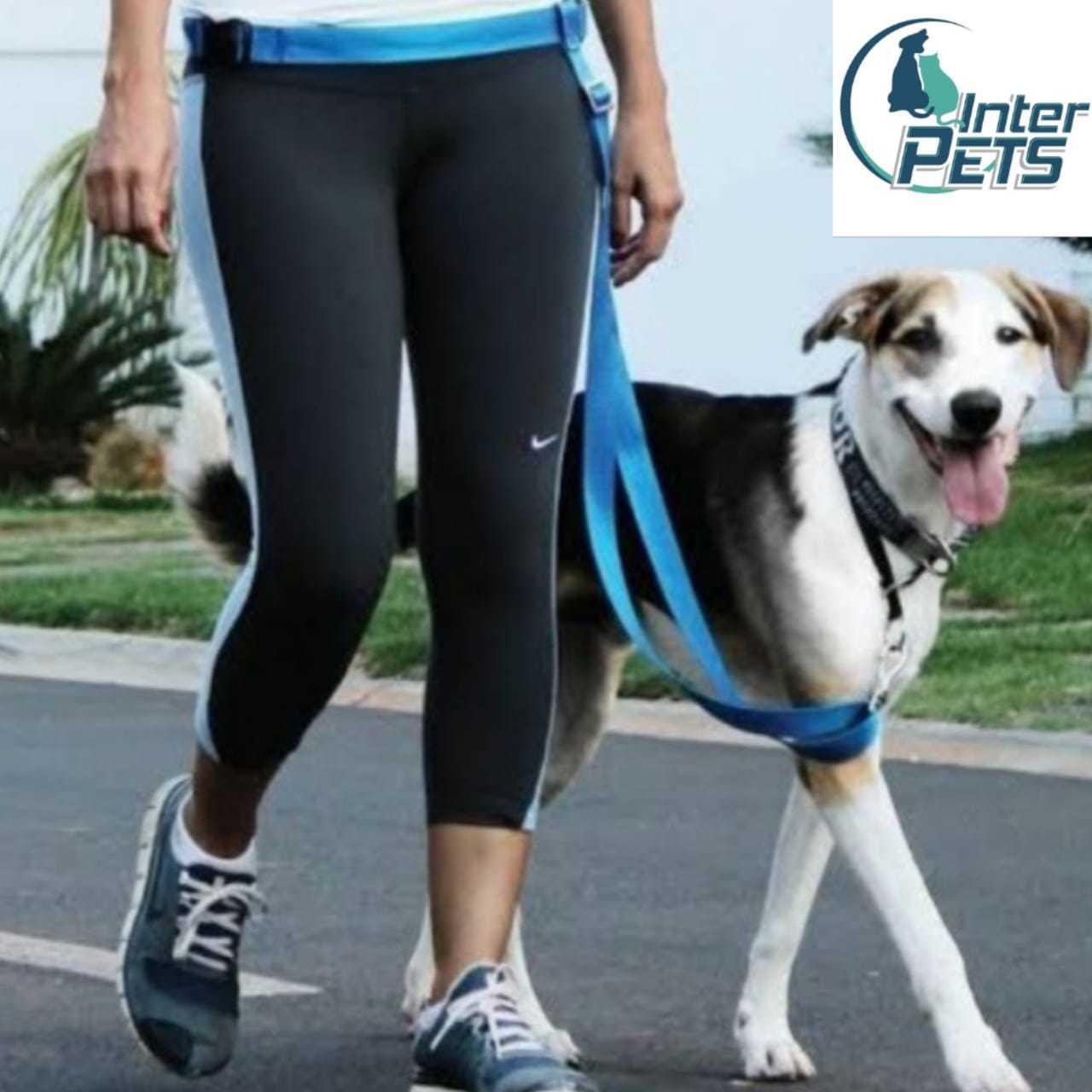 Guia para corrida ou caminhada mãos livres-Interpets
