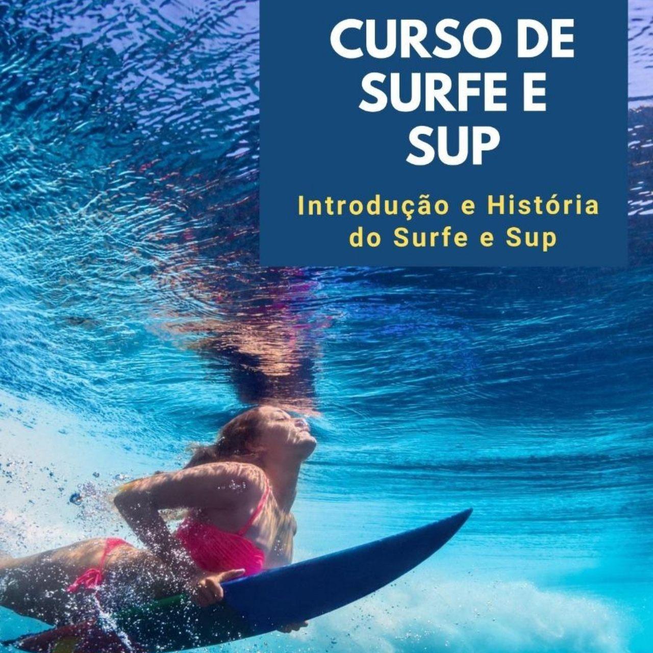 Curso ONLINE de Surf e Stand up Paddle