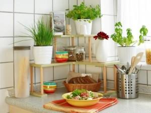 decoração da pia com plantas